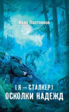 Иван Плотников - Осколки надежд